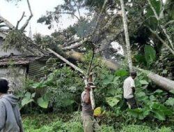 Sepanjang 2020, BPBD Catat 194 Bencana Alam Terjadi di Agam