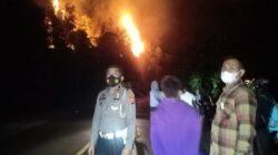 10 Hektare Lahan Gambir di Batang Kapeh Terbakar